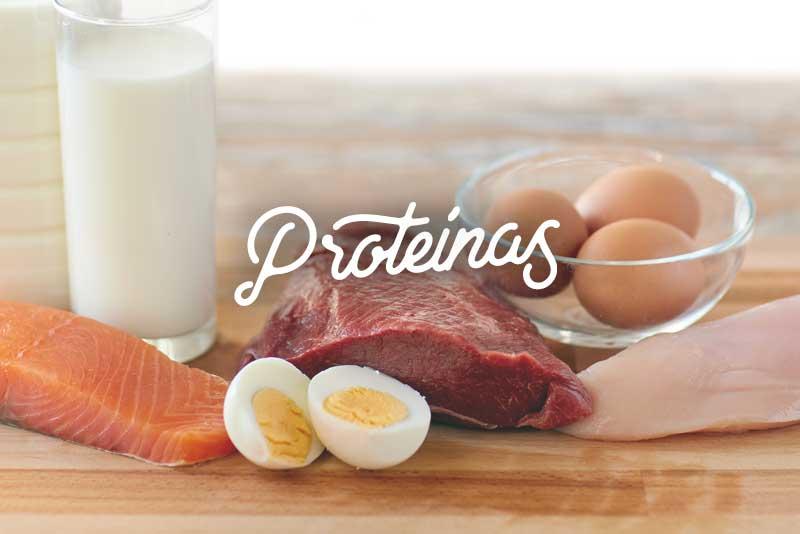 Proteínas refrigerador saludable